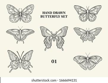 Butterfly Vector Hand Drawn Set 01