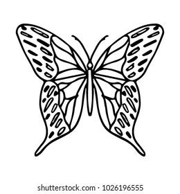 Butterfly vector illustration. Doodle style. Design, print, logo, decor, textile, paper