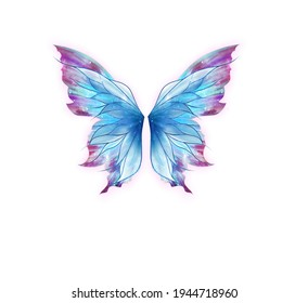 butterfly wings hand painting for this art