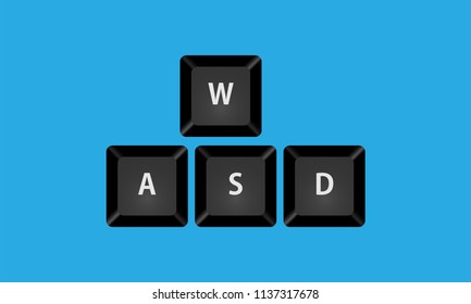 Button key WASD vector isolated close up