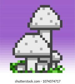 White Button Mushrooms Stock Vectors Images Vector Art