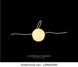 BV B V Initial handwriting logo template
