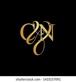 C & N / CN logo initial vector mark