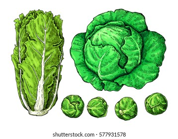 Large Green Vegetable  Letters