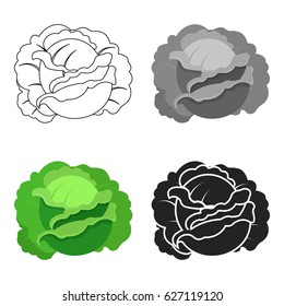 Cabbage icon cartoon. Single plant icon from the big farm, garden, agriculture cartoon.