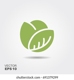 Cabbage icon in flat style. Isolated object. Cabbage logo. Vegetable from the garden. Organic food. Vector illustration.