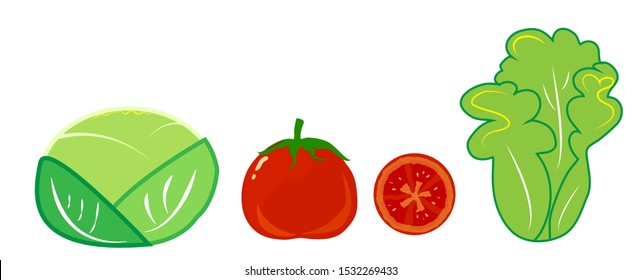 Cabbage tomato and lettuce on a white background.