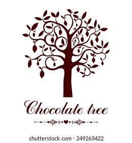 Cacao tree  isolated on white background. Vector illustration
