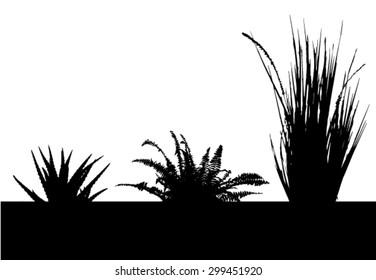 Cactus - aloe - succulent - fern - grass - plants with black space - blak silhouette - vector