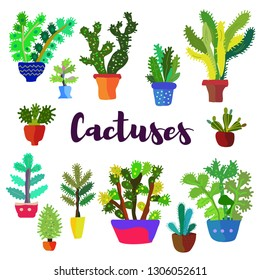 Cactus card with many plants. Vector graphic illustration