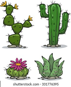 Cactus collection on a white background vector illustration