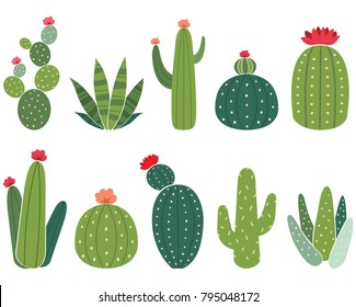 Cactus Collections Set