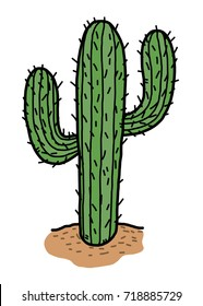 cactus in desert / cartoon vector and illustration, hand drawn style, isolated on white background.
