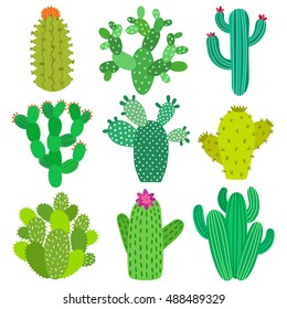 Cactus flower set. Hand drawn cactus plant collection. Vector illustrations.