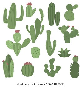 Cactus icons in flat handrawn style on white background vector illustration. Home plants cactus with flowers. Decorative cacti with prickles and without.