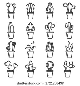 Cactus icons set. A simple linear image of various varieties of cacti in pots. Isolated vector on a white background.