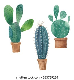 Cactus isolated on white background. Vector, watercolor hand drawn set illustration.