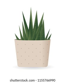 Cactus Plant In Pot. Vector illustration