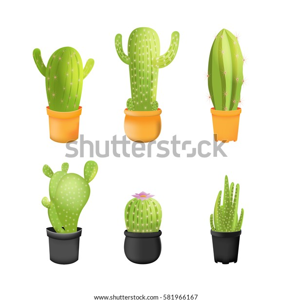 Cactus Plants Icons Set Isolated Vector