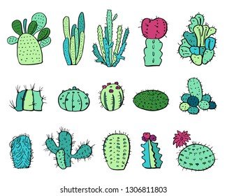 Cactus plants set. Vector colorful hand drawn outline sketch illustration isolated on white background