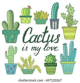 Cactus in pot set. Colored funny cute cactus vector set, cute plants. Mexican cactus set. Modern cactus illustration.
