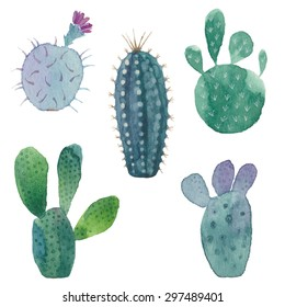 Cactus seamless pattern on white background. Vector, watercolor hand drawn set illustration.