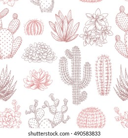Cactus seamless pattern. Sketchy style illustration. Succulent collection. Vector illustration