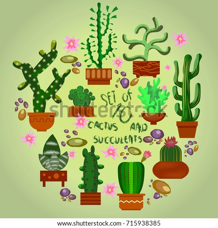 cactus set vector set of cacti various cacti in pots is perfect for decorating - Decorating Cactus For Christmas