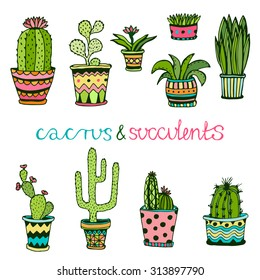 Cactus and succulent hand drawn set. Doodle flowers in pots. Vector colorful cute house interior plants