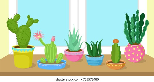 Cactus and succulents home plants in pots on window vector Illustration