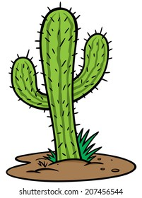 Image result for cartoon image of cactus