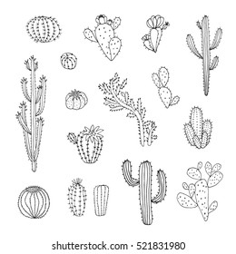 cactus vector graphic set