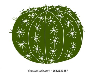 Cactus vector illustration. Isolated green cactus on a white background. Hand-drawn illustration of a cactus.