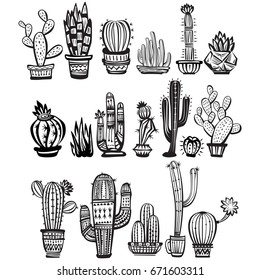 Cactuses, hand drawn vector illustration