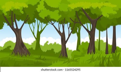 Caertoon summer forest landscape. Vector forest background.
