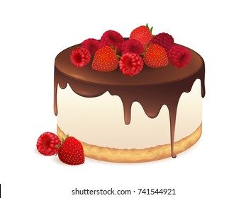Cake with fresh berries and chocolate isolated on white background. Vector illustration