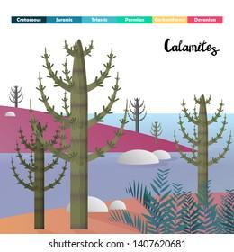 Calamitous Images, Stock Photos & Vectors | Shutterstock
