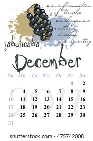 Calendar design grid with useful properties of fruits and dates of winter month December 2017. Jaboticaba. Vector illustration