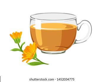 Calendula tea in glass cup with orange flower isolated on white background. Vector illustration of medical plant and healing herbal infusion in cartoon flat style.