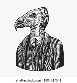California condor gentleman. American Bird in costume. Fashion animal character. Hand drawn vintage sketch. Vector engraved illustration for logo, label and tattoo or T-shirts.