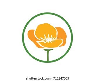 California Poppy Flower