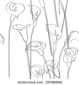 Calla asymmetrical sketch pattern, celebration invitation card on a white background