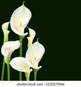 Calla Flowers. White Bouquet. Greeting Card Wedding.