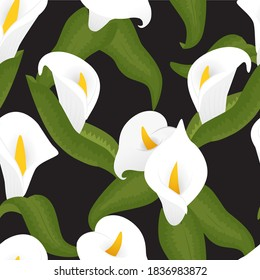 Calla Lilly, floral, flower seamless pattern. Elegant and subtle background. Vector illustration.