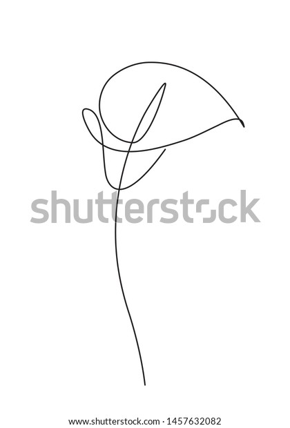 Calla lily flower. Line continuous drawing. Simple line drawing flower for logo, icon, design