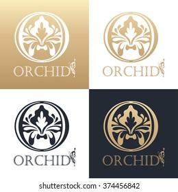 Calligraphic design element. Boutique brand, golden logo design template. Vector illustration