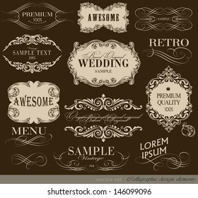 calligraphic design elements and page decoration/ vector set/ typography Design