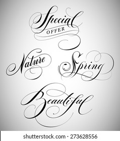 Calligraphic Lettering of words special, nature, spring and beautiful.