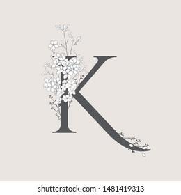 Letter K Script Images Stock Photos Vectors Shutterstock