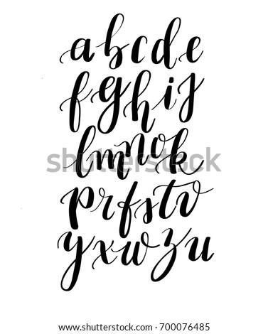 calligraphy handwritten fonts handwritten brush style stock vector